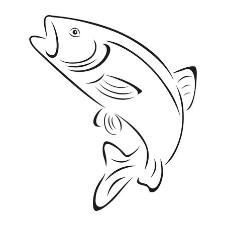 sportfishing: Trout, fish, fishing, illustration Illustration