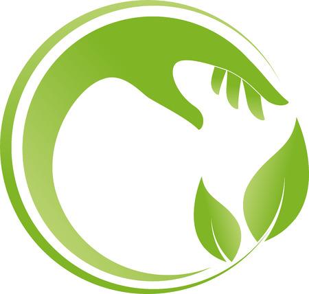 naturopath: Hand and leaves, chiropractor, naturopath