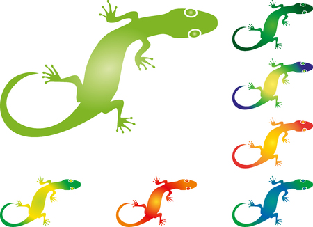 salamandre: Lizard, salamandre, gecko, animal, illustration Illustration