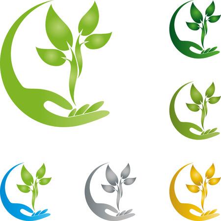 Roślina, liście, ręka, naturopata, natura
