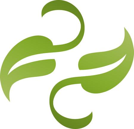 naturopath: Two leaves, plant, naturopath, nature