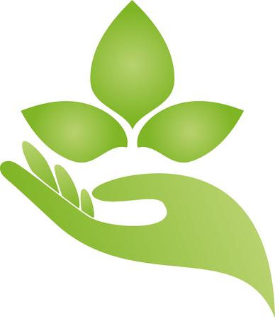 naturopath: Hand, leaves, naturopath, nature
