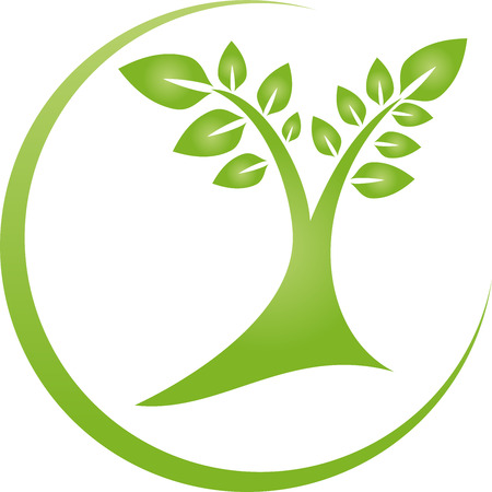 treatment plant: Tree, plant, leaves, naturopath, nature