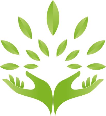 naturopath: Two hands, leaves, naturopath, nature