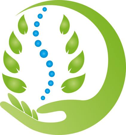 Hand, leaves, spine, back, naturopath Illustration