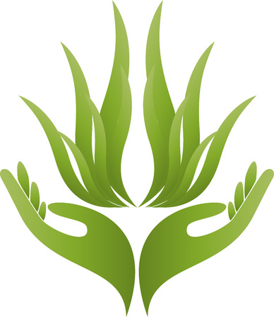 naturopath: Two hands, leaves, plant, naturopath