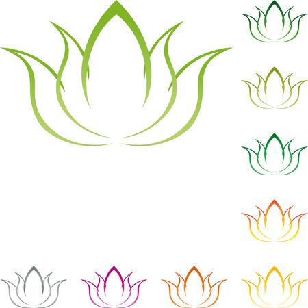 naturopath: Flower, leaves naturopath, nature, vegan
