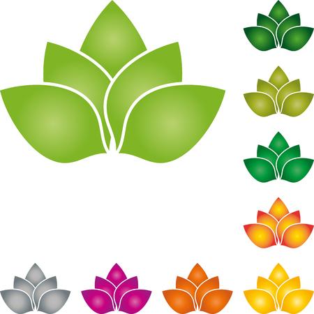 Leaves, plants, organic, nature, flower