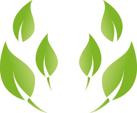 Many leaves, wellness, nature