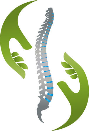 Zwei Hände und Wirbelsäule, Orthopädie, Physiotherapie-Vektor