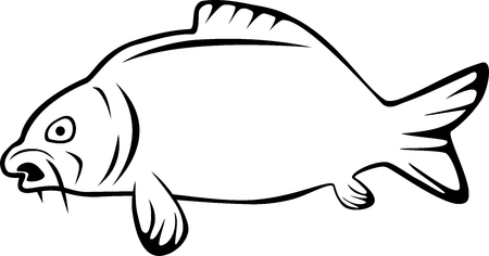 Carp, fish, sport, fishing illustration on white background. Vettoriali
