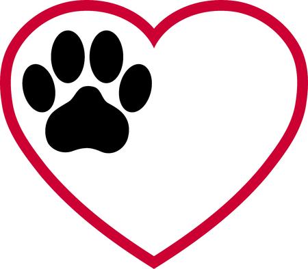 Herz, Katzenpfote, Pfote, Katzen