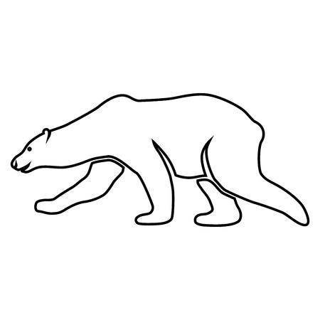 Polar bear, bear, animal