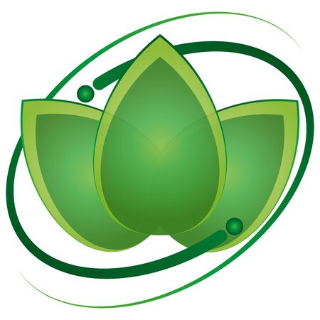 Leaves, plans, naturopath, wellness, massage