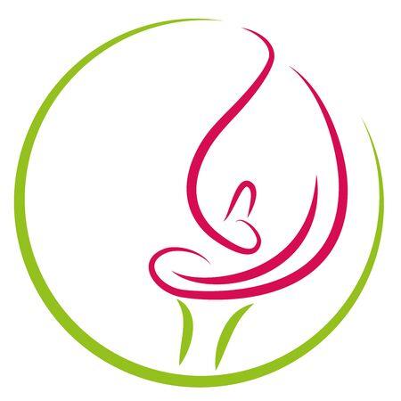 Zantedeschia, plant, calla, flower Illustration