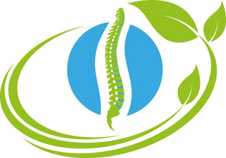 Spine, chiropractor, naturopath, orthopedics, background Vektorgrafik