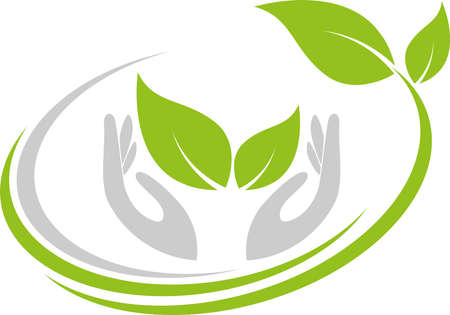 Leaves, plants, hands, naturopath and nature background