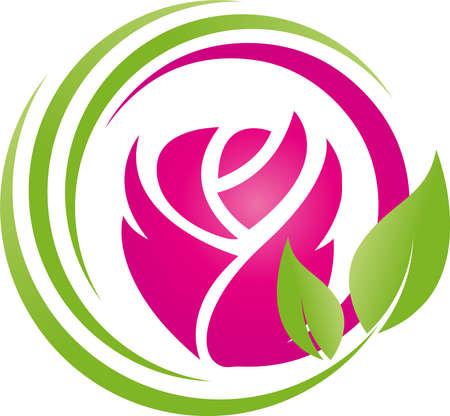 Flower, rose, gift, gardener