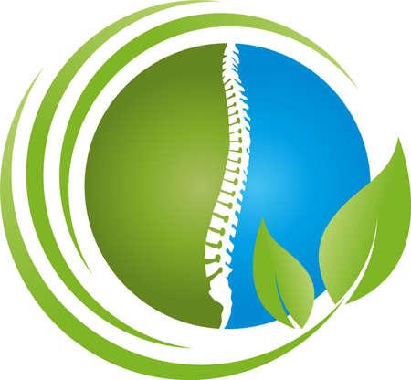 Spine and leaves, back, orthopedics and massage