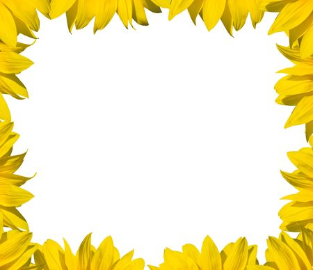 bed frame: sunflower frame for text or image Stock Photo