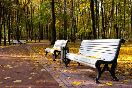 Benches in Idyllic park area Stock Photo - 7090035