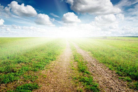 Green field under midday sun. Rural road. Stock Photo