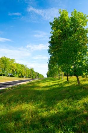 Long rural road to green hills.  Belarus Stock Photo - 8153914