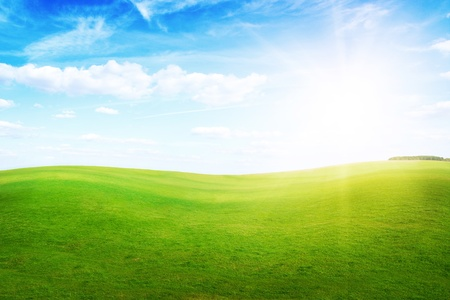 Green grass hills under midday sun in blue sky. Forest in the distance.