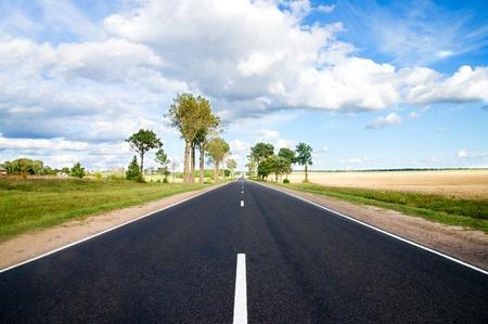 Asphalt road in green meadow. Belarus. Stock Photo - 8661505