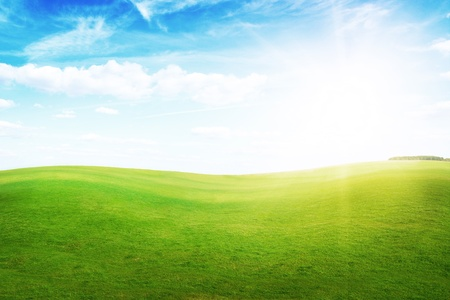 Green grass hills under midday sun in blue sky. Forest in the distance. Stock Photo - 8661492