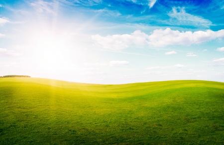 Grüne Gras Hills unter Mittagssonne in blauen Himmel. Wald in der Ferne.