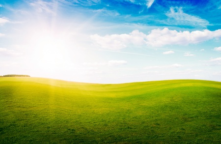 Green grass hills under midday sun in blue sky. Forest in the distance. Stock Photo - 8661496