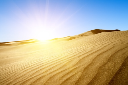 Gold desert into the sunset  Canary Islands, Canaries  Grand Canary  Maspalomas, Resort Town Stock Photo - 12653637