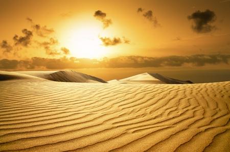 Desert Gold dans les îles Canaries à l'extinction, Maspalomas Canaries Grande Canarie, Ville Resort Banque d'images