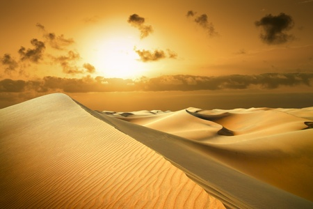 Gold desert in sunset  Canary Islands, Canaries  Grand Canary  Maspalomas, Resort Town