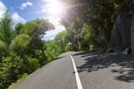 Mahe  Seychelles island  Asphalt road in tropical forest Stock Photo - 16542452