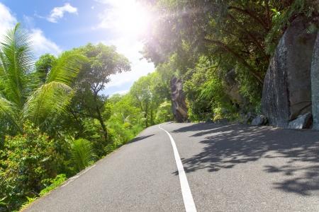 backwoods: Mahe  Seychelles island  Asphalt road in tropical forest