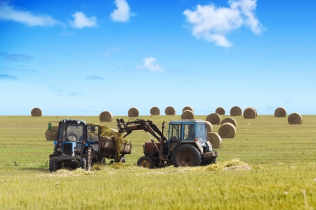 Farmers harvesting hay by tractores in unny day. photo