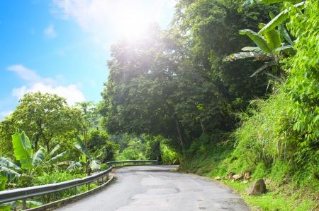 backwoods: Mahe. Seychelles island. Asphalt road in tropical forest.