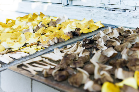 Dried slices of mushroom on the Board. Village photo
