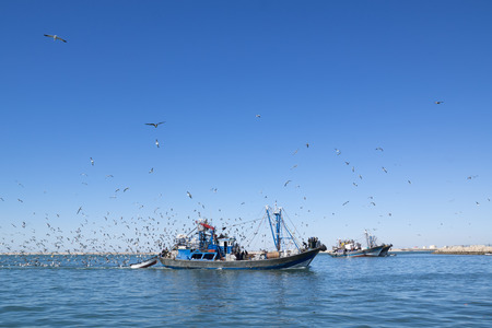 schooner: Fishing schooner comes into the port is full of catch. Sunny day.