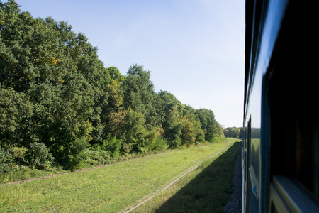 Passenger train rides through the forest. Sunny. photo