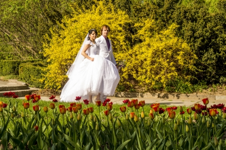 couple in love bride and groom together in wedding summer  photo