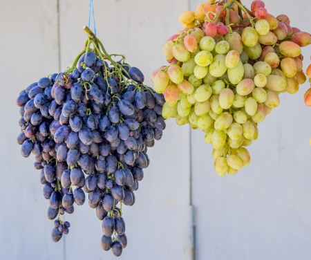 green and blue grapes  photo