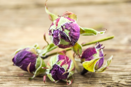 wilting: A dried rose on wooden background