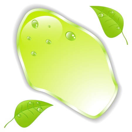 Green leaf with space for text. Vector Vector