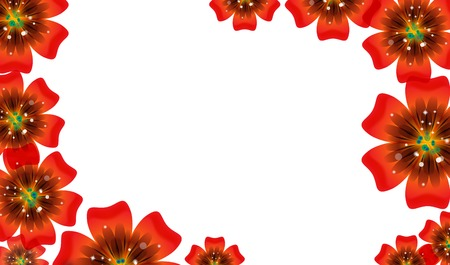 Brochure design, abstract background with beautiful colored flower pattern.  Vector