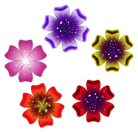 SET Brochure design, abstract background with beautiful colored flower pattern.  Vector