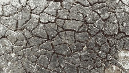 Grunge wooden  Abstract pattern, Retro Vintage Dark Old  texture. Presentation Grey Business background. photo