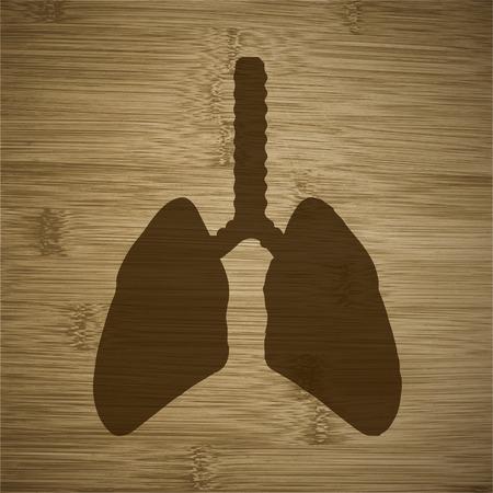 respiratory protection: Human lung.